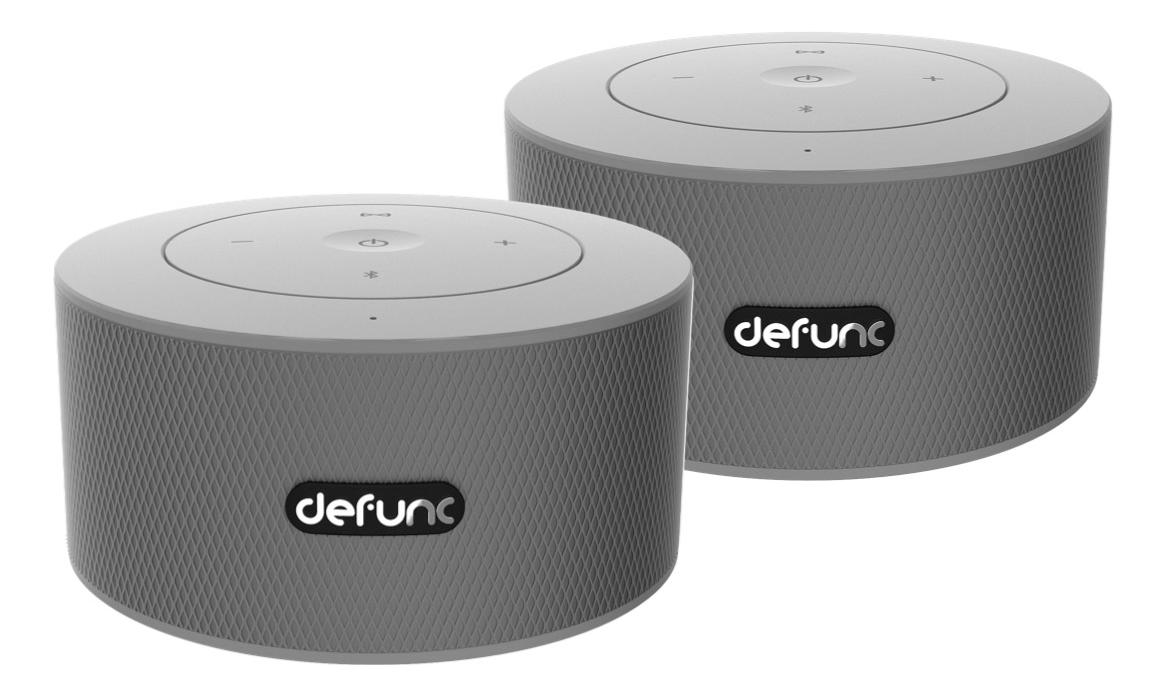 DeFunc DUO, Bluetooth högtalare, silver