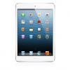 iPad Mini 4/5