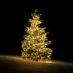 Deltaco Smart Home Julgransbelysning för inomhus/utomhus, 2m